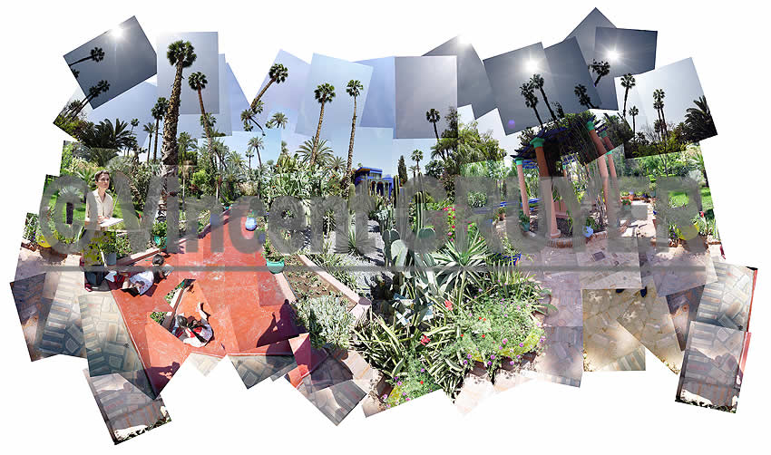 Photo panoramique du jardin de la maison Majorelle à Marrakech